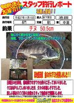 blog-20151116-sinsimo-ikeda.jpg