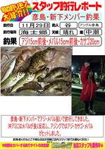 blog-20151129-hikosima-ajimebaru.jpg