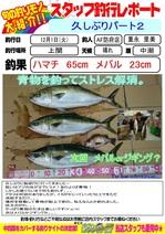 blog-20151201-houfu-hamati.jpg