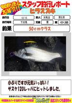 blog-20151216-tsushima-asahina.jpg
