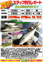 blog-choufu-20151208-watari.jpg