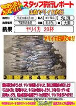 blog-20150207-sinsimo-kito.jpg
