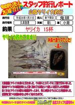 blog-20160131-sinsimo-kito.jpg