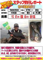 blog-20160324-sinsimo-murati.jpg