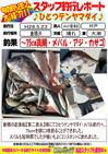 blog-2016-05-23-koyaura-hitotutennya.jpg