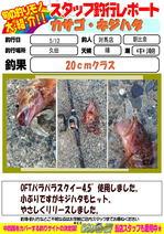 blog-20160513-tsushima-asahina.jpg