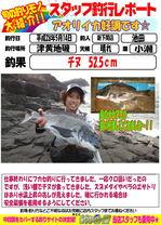 blog-20160514-sinsimo-ikeda.jpg