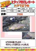 blog-20160525-tsushima-asahina.jpg