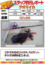 blog-20160531-tsushima-asahina.jpg