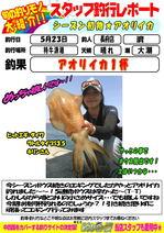 blog-choufu-20160523-watari.jpg