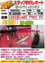 blog-20160609-sinsimo-ikeda.jpg