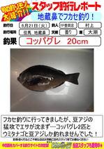 blog-20160621-toyooka-01.jpg