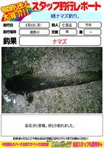 blog-2016606-niho-a.jpg
