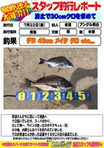 image.jpg2.jpg相島 クロ.jpg
