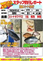 blog-20160916-sinsimo-oosaki.jpgのサムネイル画像