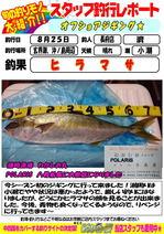 blog-choufu-20160825-watari.jpg