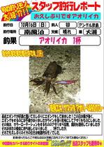 blog-20161016-hikoshima-ika.jpg