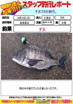 blog-20161016-niho-a.jpg