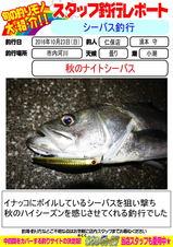 blog-20161023-niho.jpg