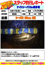 image.jpg石松.jpg