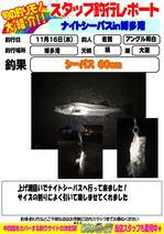 image.jpg3シーバス.jpg