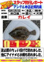 2016 12 15 karei  .jpg