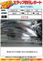 blog-20161226-niho-a.jpg