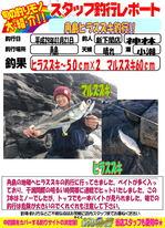 blog-20170121-sinsimo-kanbayashi.jpg