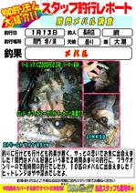 blog-choufu-20170113-watari.jpg