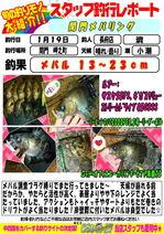 blog-choufu-20170119-watari.jpg