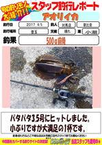 blog-20170405-tsushima-asahina.jpg
