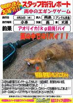 blog-20170426-hikoshima-ika.jpg