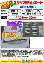 blog-choufu-20170331matumaru.jpg