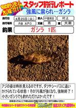 blog-20170425-toyooka-01.jpg