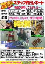 blog-20170518-hikoshima-ika.jpg