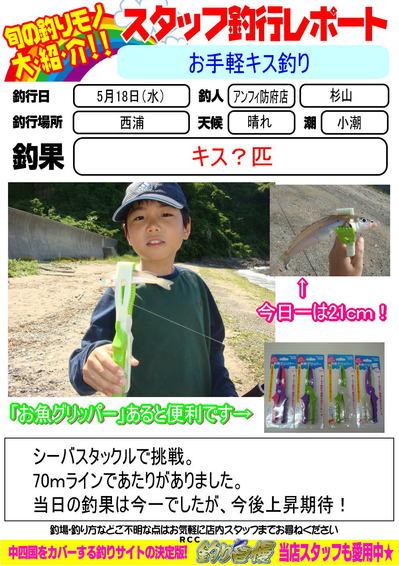 blog-20170518-houfu-kisu.jpg