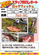 blog-20170525-tsushima-asahina.jpg