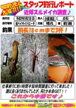sutaltufu-20170522-koyaura-1.jpg