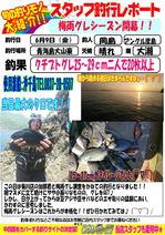 blog-20170609-hikoshima-gure.jpg