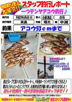 sutaltufu-20170606-koyaura-1.jpg