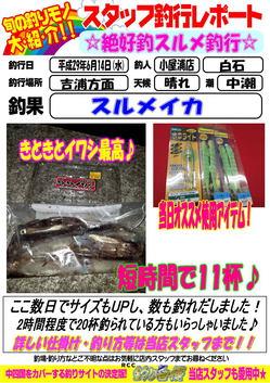 sutaltufu-20170616-koyaura-1.jpg