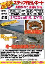 blog-20170808-hikoshima-aomono.jpg
