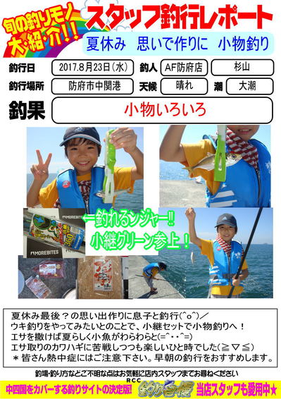 blog-20170823-houfu-komono.jpg