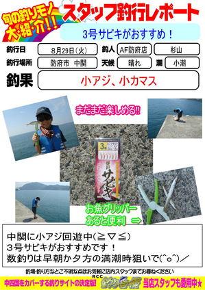 blog-20170829-houfu-sabiki.jpgのサムネイル画像