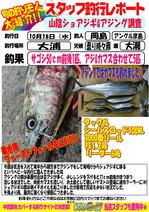 blog-20171018-hikoshima-sawara.jpg