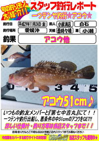 sutaltufu-20171124-koyaura-1.jpg