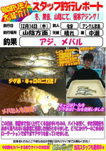 blog-20171214-hikoshima-aji.jpg