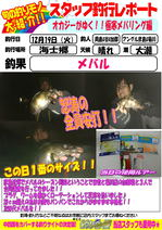 blog-20171219-hikoshima-mebaru.jpg