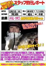 blog-20171221-hikomebaru-aji.jpg