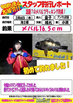blog-20180208-hikoshima-mebaru.jpg